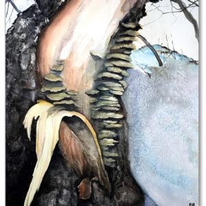 Winter Spruce canvas